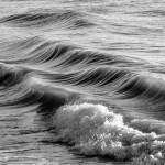 Saluto al mare 2015