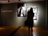 casa dei carraresi mostra arte contemporanea