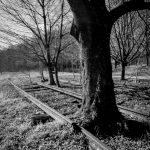 andreabrussi.it - Vecchia ferrovia